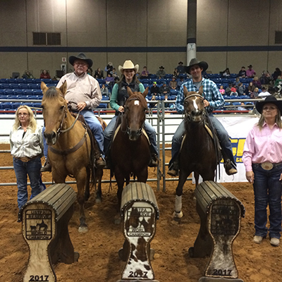Reserve World Champions At USTPA 2017 National World Championship Show at Fort Worth, Texas